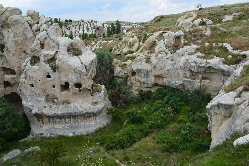 gomeda-valley